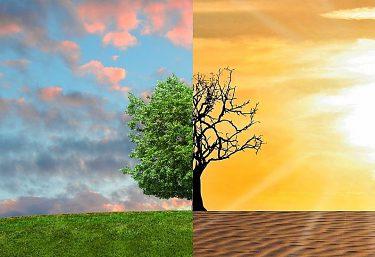 ZELENÝ SVET a MÚDRA PRÍRODA v znamení ZMENY ČI PREMENY?