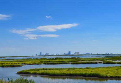 Svetový deň mokradí v znamení ich významu pre udržateľnú budúcnosť miest