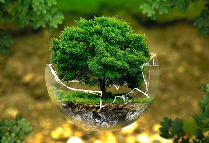 Zapojte sa do online konzultácie o environmentálnej značke EÚ