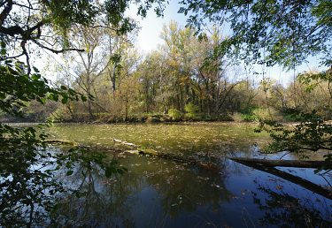 Svetový deň vody upozorňuje na dôležitosť mokradí