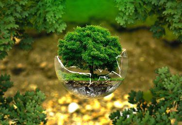 Oslávme Deň Zeme, napriek všetkému, aktívne