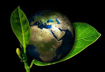 Webinár otvorí tému Zelenej dohody a zeleného financovania na Slovensku